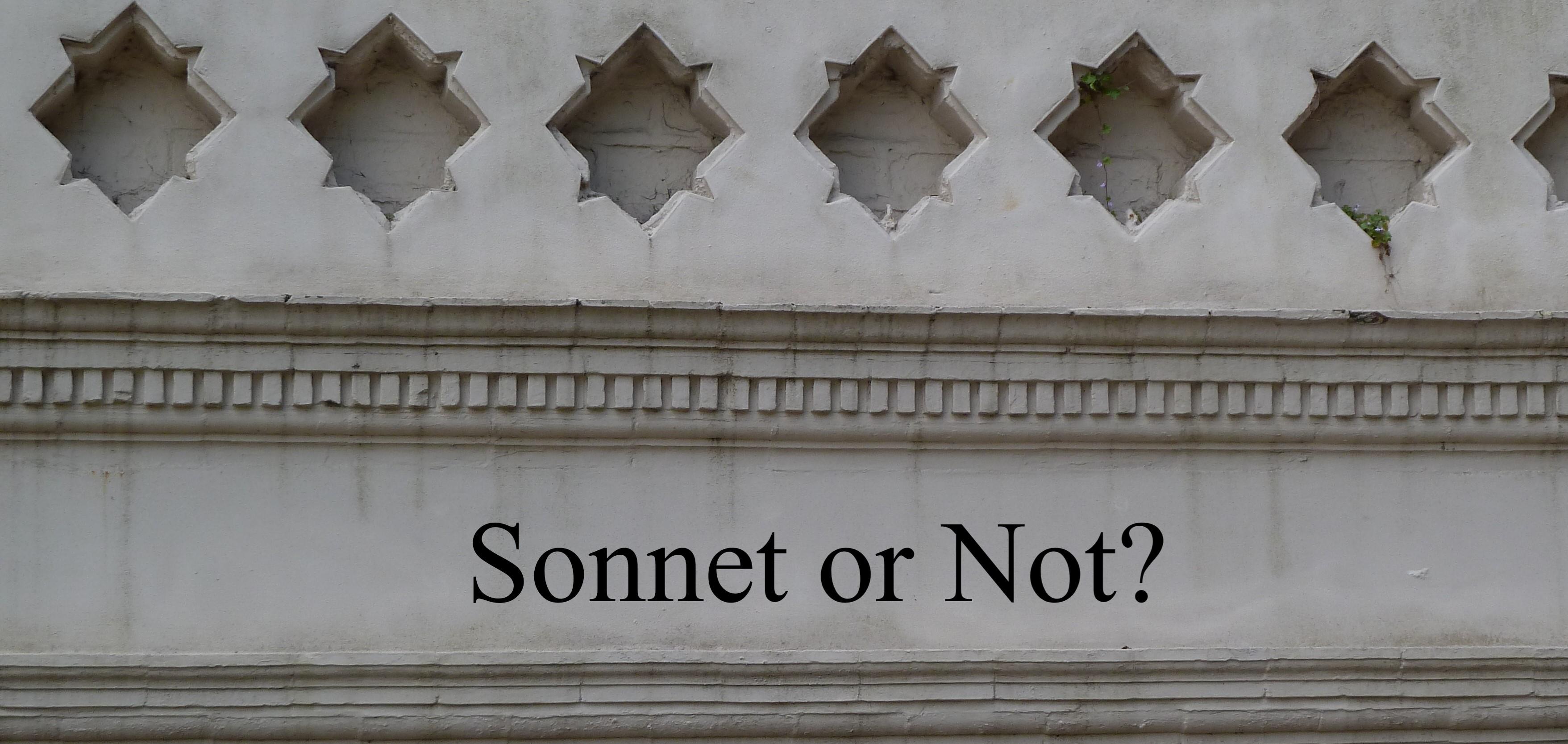 20210730 Sonnet or Not